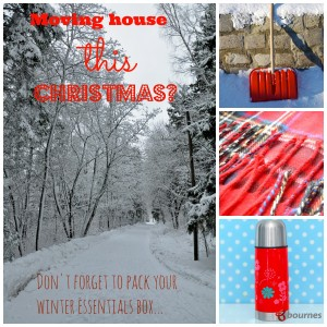 moving house at Christmas - items to pack in your essentials box