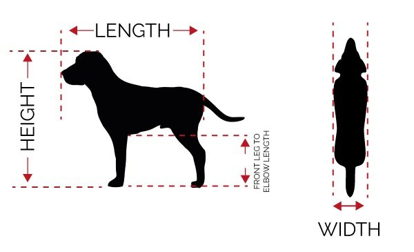 Measuring a dog for shipping