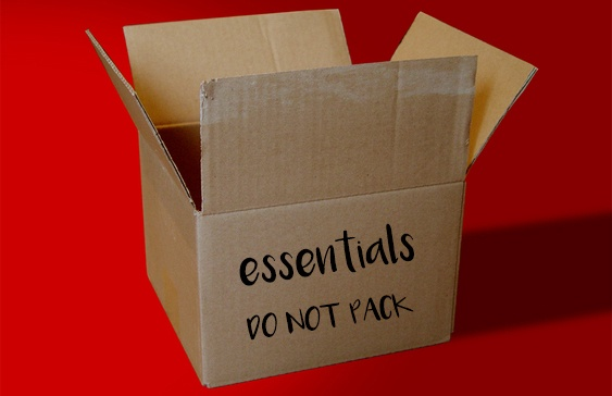 essentials box when moving house